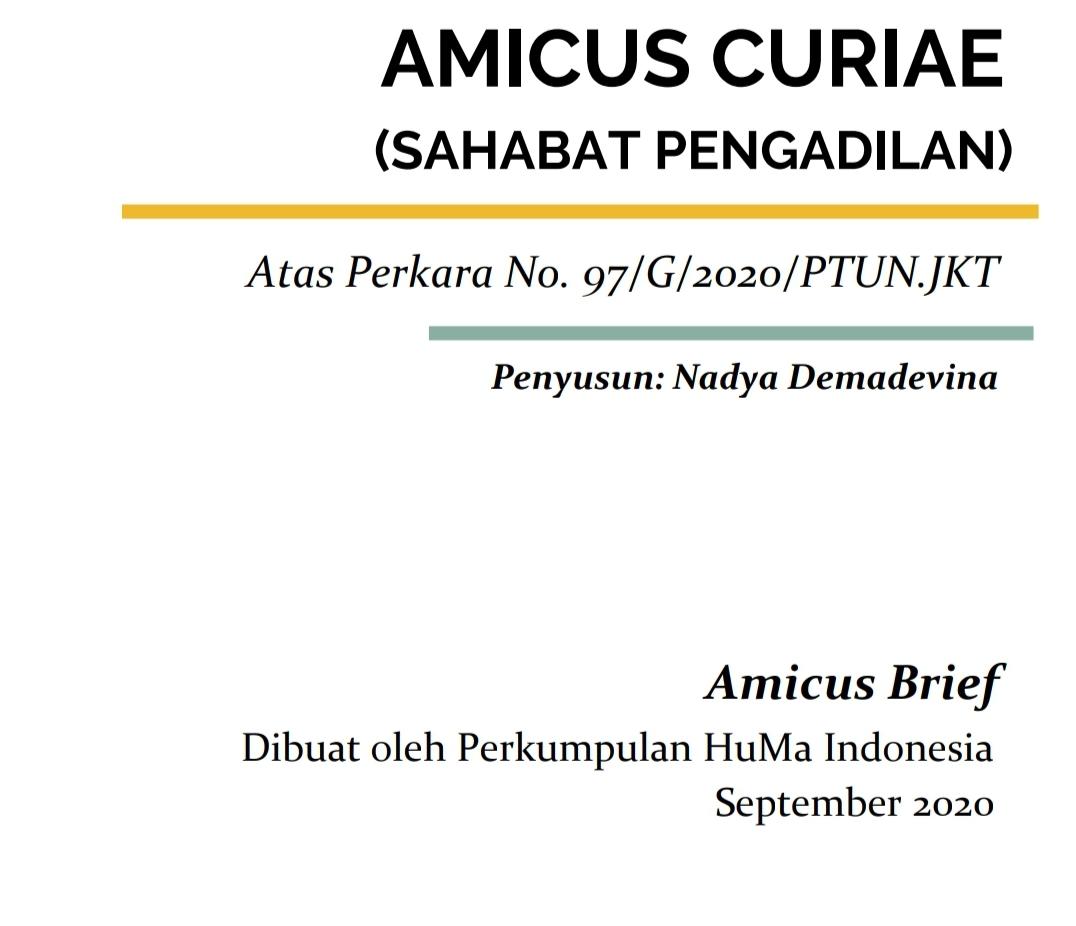Amicus Brief Omnibus - HuMa